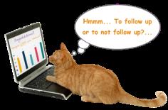 Cat_Webinar-Follow-Up